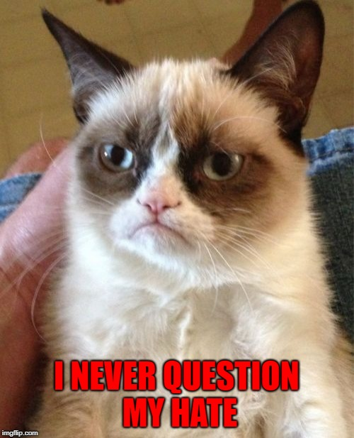 Grumpy Cat Meme | I NEVER QUESTION MY HATE | image tagged in memes,grumpy cat | made w/ Imgflip meme maker