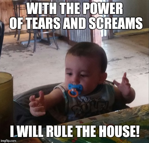 Power Baby | WITH THE POWER OF TEARS AND SCREAMS I WILL RULE THE HOUSE! | image tagged in power baby | made w/ Imgflip meme maker