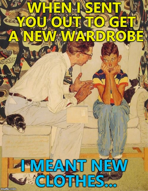 You can never have too many wardrobes... Or lions... Or witches... :) |  WHEN I SENT YOU OUT TO GET A NEW WARDROBE; I MEANT NEW CLOTHES... | image tagged in memes,the probelm is,the problem is,clothes,shopping,misunderstanding | made w/ Imgflip meme maker