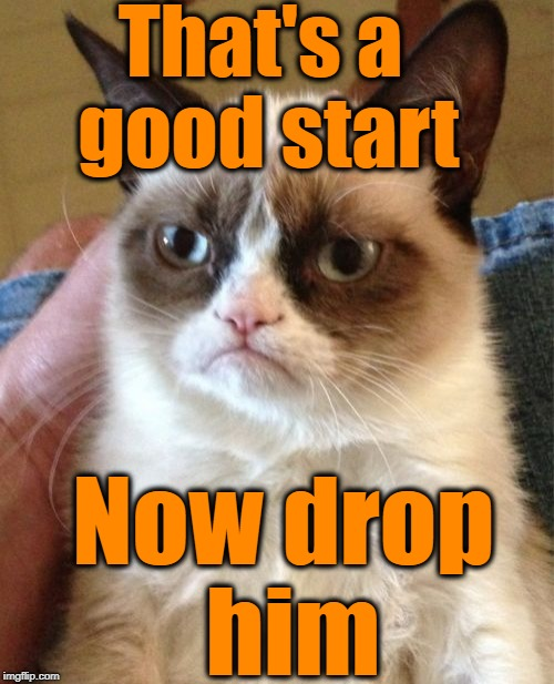 Grumpy Cat Meme | That's a good start Now drop him | image tagged in memes,grumpy cat | made w/ Imgflip meme maker
