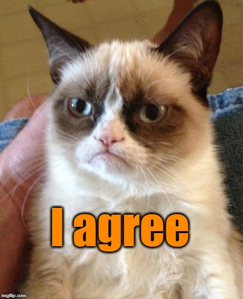Grumpy Cat Meme | I agree | image tagged in memes,grumpy cat | made w/ Imgflip meme maker