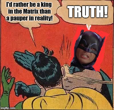 Batman Slapping Robin Meme | I'd rather be a king in the Matrix than a pauper in reality! TRUTH! | image tagged in memes,batman slapping robin | made w/ Imgflip meme maker
