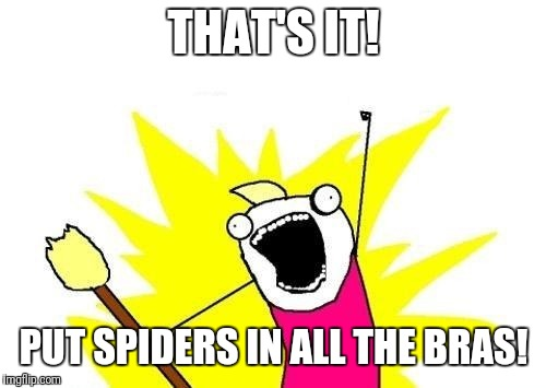 What do we want | THAT'S IT! PUT SPIDERS IN ALL THE BRAS! | image tagged in what do we want | made w/ Imgflip meme maker