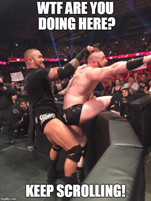 wwe randy ortan having fun with sheamus  | WTF ARE YOU DOING HERE? KEEP SCROLLING! | image tagged in wwe randy ortan having fun with sheamus | made w/ Imgflip meme maker