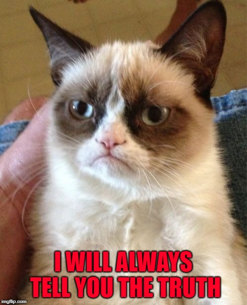 Grumpy Cat Meme | I WILL ALWAYS TELL YOU THE TRUTH | image tagged in memes,grumpy cat | made w/ Imgflip meme maker