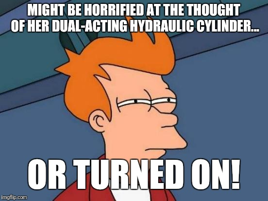 Futurama Fry Meme | MIGHT BE HORRIFIED AT THE THOUGHT OF HER DUAL-ACTING HYDRAULIC CYLINDER... OR TURNED ON! | image tagged in memes,futurama fry | made w/ Imgflip meme maker
