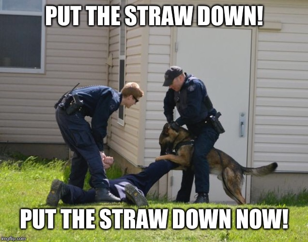 People who use plastic straws have to be stopped | PUT THE STRAW DOWN! PUT THE STRAW DOWN NOW! | image tagged in jokes,funny,cops | made w/ Imgflip meme maker