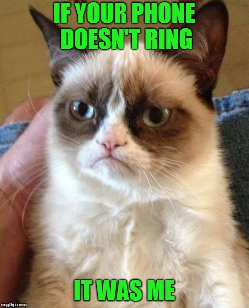 Grumpy Cat Meme | IF YOUR PHONE DOESN'T RING IT WAS ME | image tagged in memes,grumpy cat | made w/ Imgflip meme maker