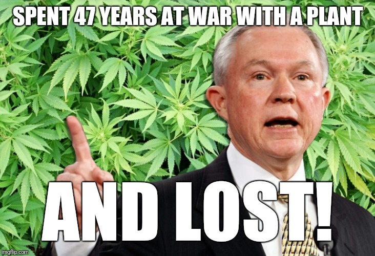 Jeff sessions lost the war on drugs | SPENT 47 YEARS AT WAR WITH A PLANT AND LOST! | image tagged in war on drugs,jeff sessions,attorney general,cannabis,end prohibition,marijuana | made w/ Imgflip meme maker