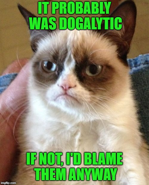 Grumpy Cat Meme | IT PROBABLY WAS DOGALYTIC IF NOT, I'D BLAME THEM ANYWAY | image tagged in memes,grumpy cat | made w/ Imgflip meme maker
