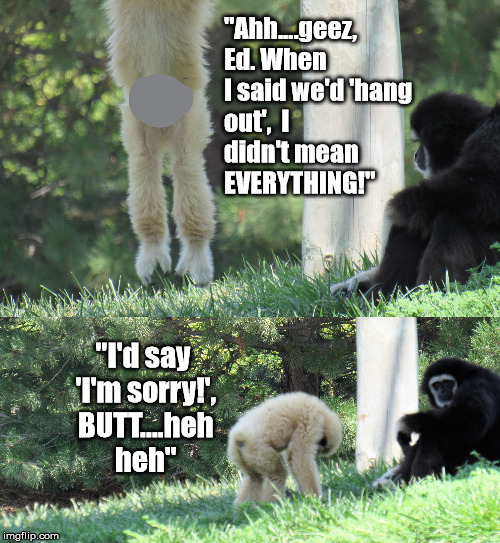"Ed lets it all hang out, BUTT... | ""Ahh....geez,  Ed. When I said we'd 'hang out',  I didn't mean      EVERYTHING!"" ""I'd say 'I'm sorry!', BUTT....heh heh"" 