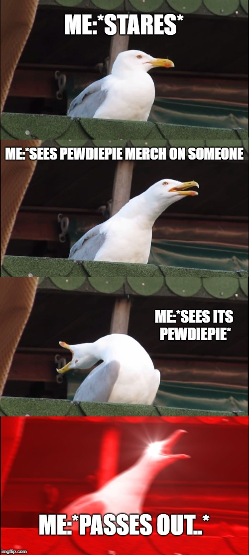 Inhaling Seagull Meme | ME:*STARES* ME:*SEES PEWDIEPIE MERCH ON SOMEONE ME:*SEES ITS PEWDIEPIE* ME:*PASSES OUT..* | image tagged in memes,inhaling seagull | made w/ Imgflip meme maker
