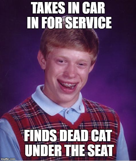 Bad Luck Brian Meme | TAKES IN CAR IN FOR SERVICE FINDS DEAD CAT UNDER THE SEAT | image tagged in memes,bad luck brian | made w/ Imgflip meme maker