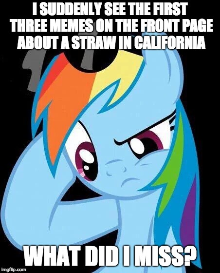 Catch me up here! | I SUDDENLY SEE THE FIRST THREE MEMES ON THE FRONT PAGE ABOUT A STRAW IN CALIFORNIA WHAT DID I MISS? | image tagged in confused rainbow dash,memes,straws,california,news,ponies | made w/ Imgflip meme maker