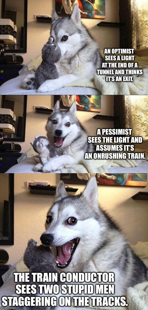 Bad Pun Dog Meme | AN OPTIMIST SEES A LIGHT AT THE END OF A TUNNEL AND THINKS IT'S AN EXIT. A PESSIMIST SEES THE LIGHT AND ASSUMES IT'S AN ONRUSHING TRAIN. THE | image tagged in memes,bad pun dog | made w/ Imgflip meme maker