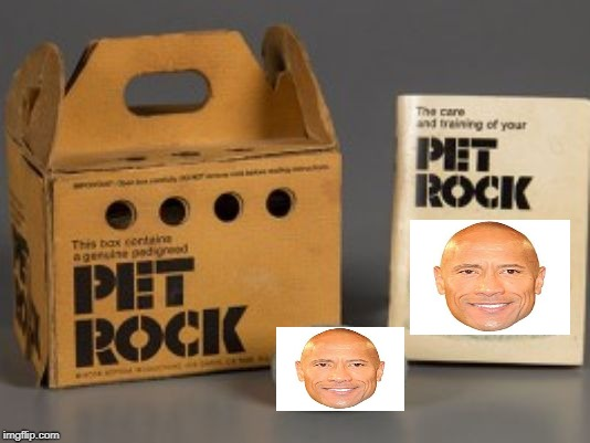 Pet rock | image tagged in pet rock | made w/ Imgflip meme maker
