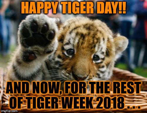 Happy Tiger Day :D | HAPPY TIGER DAY!! AND NOW, FOR THE REST OF TIGER WEEK 2018 . . . | image tagged in memes,tiger week,tiger week 2018,tiger day,happy,tigerlegend1046 | made w/ Imgflip meme maker