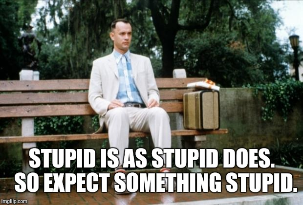 Forrest Gump | STUPID IS AS STUPID DOES.  SO EXPECT SOMETHING STUPID. | image tagged in forrest gump | made w/ Imgflip meme maker
