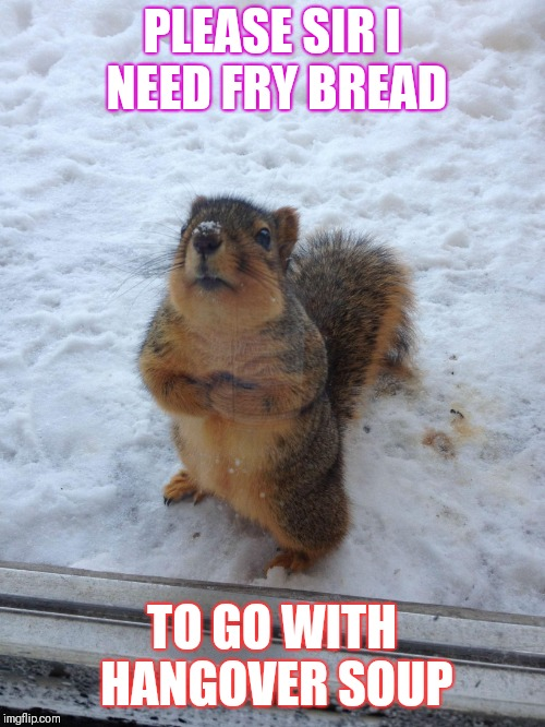 squirrel begging | PLEASE SIR I NEED FRY BREAD TO GO WITH HANGOVER SOUP | image tagged in squirrel begging | made w/ Imgflip meme maker