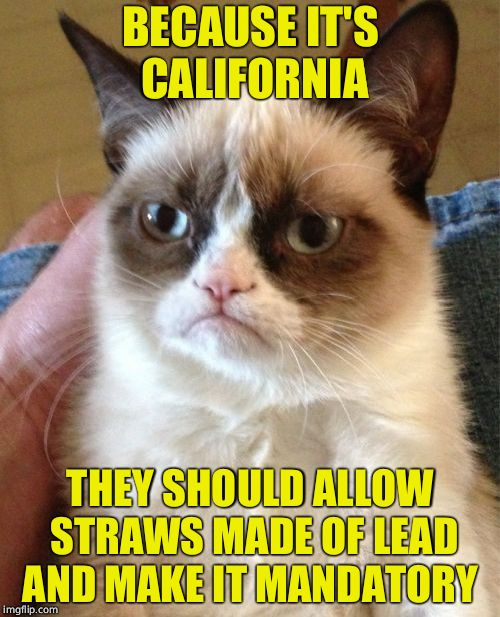 And dusted with asbestos | BECAUSE IT'S CALIFORNIA THEY SHOULD ALLOW STRAWS MADE OF LEAD AND MAKE IT MANDATORY | image tagged in memes,grumpy cat,california,straws,straw,politics | made w/ Imgflip meme maker