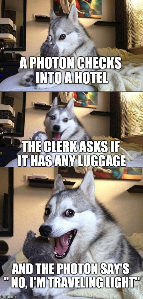 "Bad Pun Dog Meme | A PHOTON CHECKS INTO A HOTEL THE CLERK ASKS IF IT HAS ANY LUGGAGE AND THE PHOTON SAY'S "" NO, I'M TRAVELING LIGHT"" 