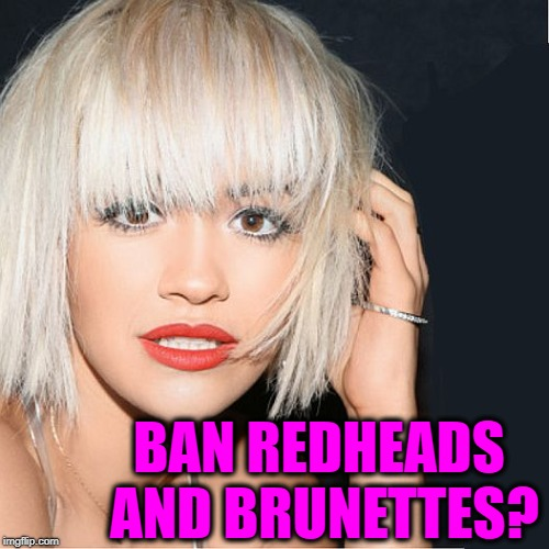 ditz | BAN REDHEADS AND BRUNETTES? | image tagged in ditz | made w/ Imgflip meme maker