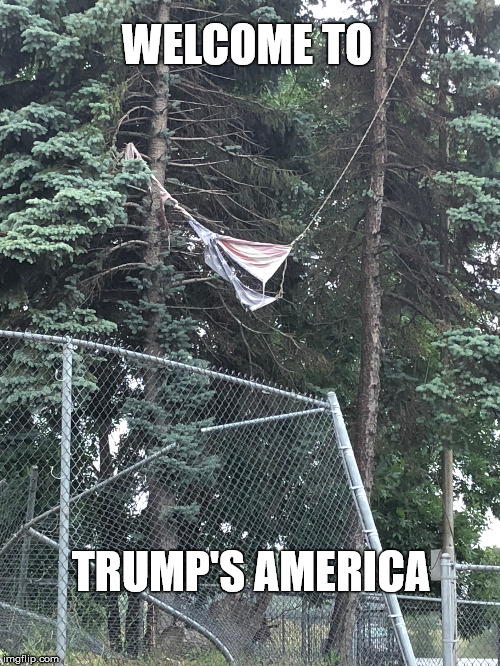 WELCOME TO TRUMP'S AMERICA | image tagged in trump | made w/ Imgflip meme maker