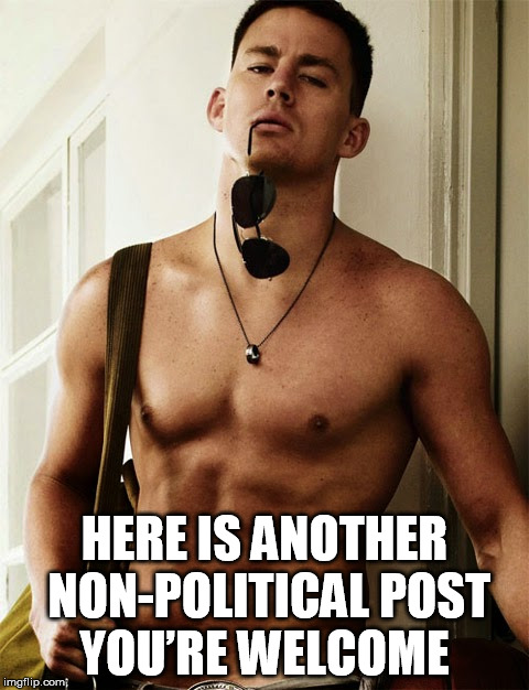 You're Welcome,   | HERE IS ANOTHER NON-POLITICAL POST  YOU'RE WELCOME | image tagged in you're welcome,magic mike,stop political post | made w/ Imgflip meme maker