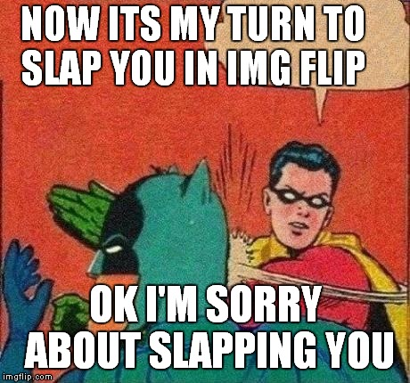 Robin Slaps Batman | NOW ITS MY TURN TO SLAP YOU IN IMG FLIP OK I'M SORRY ABOUT SLAPPING YOU | image tagged in robin slaps batman | made w/ Imgflip meme maker