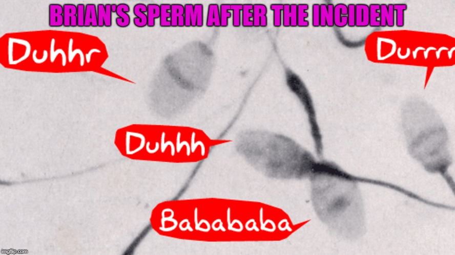 BRIAN'S SPERM AFTER THE INCIDENT | made w/ Imgflip meme maker