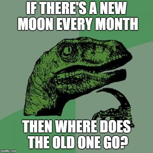 Philosoraptor Meme | IF THERE'S A NEW MOON EVERY MONTH THEN WHERE DOES THE OLD ONE GO? | image tagged in memes,philosoraptor | made w/ Imgflip meme maker