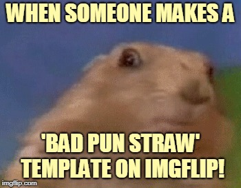 WHEN SOMEONE MAKES A 'BAD PUN STRAW' TEMPLATE ON IMGFLIP! | made w/ Imgflip meme maker