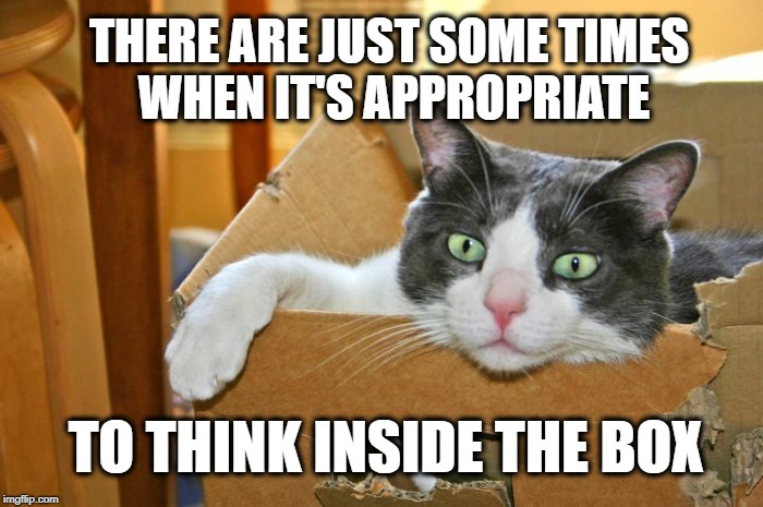 I should but a box cat. |  THERE ARE JUST SOME TIMES WHEN IT'S APPROPRIATE; TO THINK INSIDE THE BOX | image tagged in think outside the box,cat,nap,the most interesting cat in the world,think about it,think | made w/ Imgflip meme maker