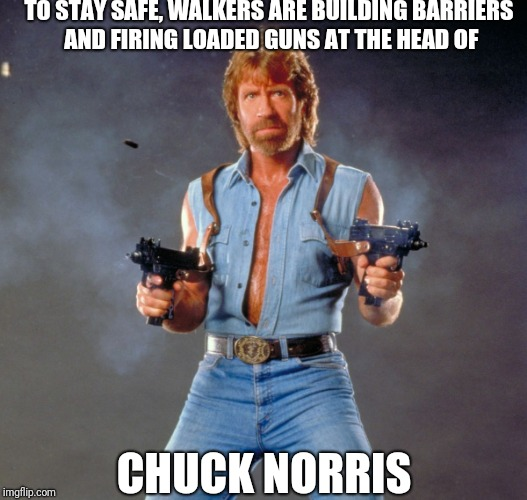 "Chuck Norris on ""The Walking Dead"" 