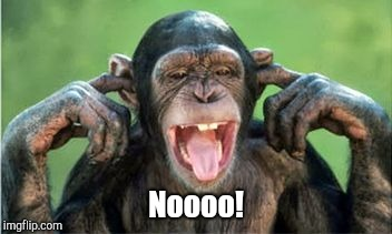 Noooo! | image tagged in chimp denial | made w/ Imgflip meme maker