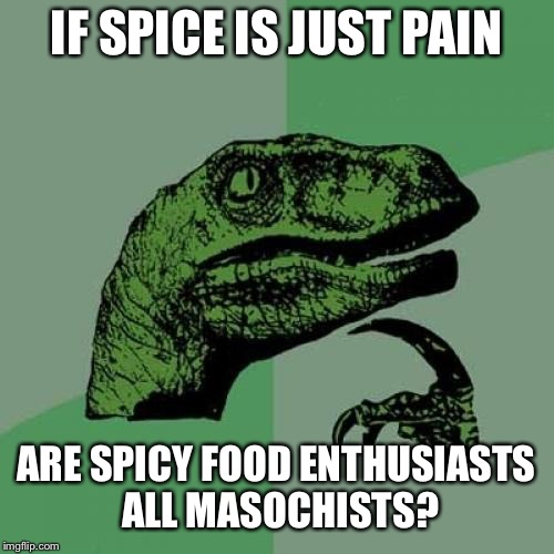 Philosoraptor Meme | IF SPICE IS JUST PAIN ARE SPICY FOOD ENTHUSIASTS ALL MASOCHISTS? | image tagged in memes,philosoraptor | made w/ Imgflip meme maker