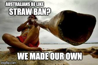 Meanwhile in Australia... | AUSTRALIANS BE LIKE STRAW BAN? WE MADE OUR OWN | image tagged in memes,straws,meanwhile in australia,australia | made w/ Imgflip meme maker
