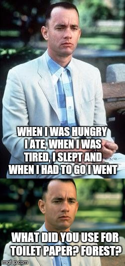 Thought? | WHAT DID YOU USE FOR TOILET PAPER? FOREST? WHEN I WAS HUNGRY I ATE, WHEN I WAS TIRED, I SLEPT AND WHEN I HAD TO GO I WENT | image tagged in forrest gump | made w/ Imgflip meme maker