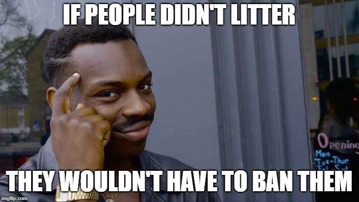 Roll Safe Think About It Meme | IF PEOPLE DIDN'T LITTER THEY WOULDN'T HAVE TO BAN THEM | image tagged in memes,roll safe think about it | made w/ Imgflip meme maker