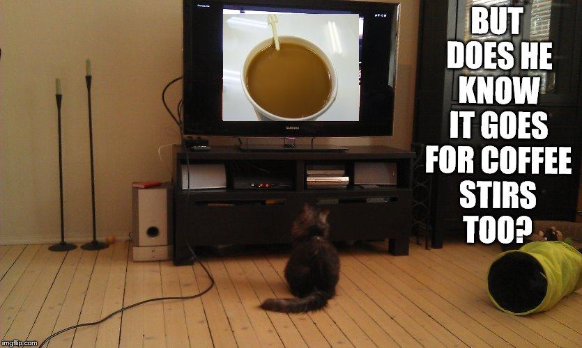 BUT DOES HE KNOW IT GOES FOR COFFEE STIRS TOO? | made w/ Imgflip meme maker