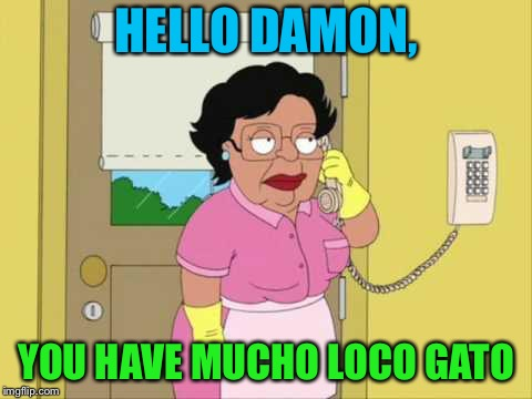 Consuela Meme | HELLO DAMON, YOU HAVE MUCHO LOCO GATO | image tagged in memes,consuela | made w/ Imgflip meme maker