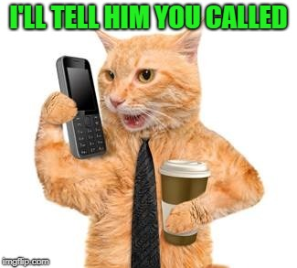 I'LL TELL HIM YOU CALLED | made w/ Imgflip meme maker