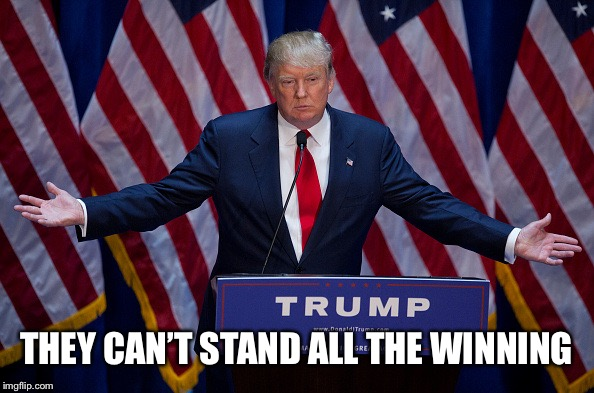 Donald Trump | THEY CAN'T STAND ALL THE WINNING | image tagged in donald trump | made w/ Imgflip meme maker