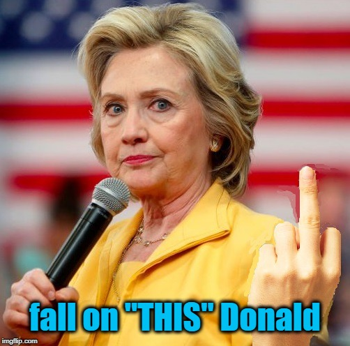 "wow! | fall on ""THIS"" Donald 