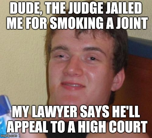 10 Guy Meme | DUDE, THE JUDGE JAILED ME FOR SMOKING A JOINT MY LAWYER SAYS HE'LL APPEAL TO A HIGH COURT | image tagged in memes,10 guy | made w/ Imgflip meme maker