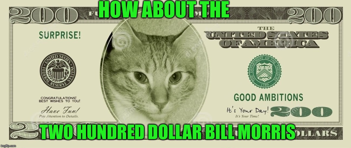 HOW ABOUT THE TWO HUNDRED DOLLAR BILL MORRIS | made w/ Imgflip meme maker