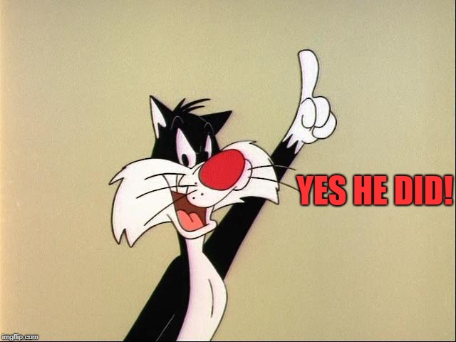sylvester | YES HE DID! | image tagged in sylvester | made w/ Imgflip meme maker