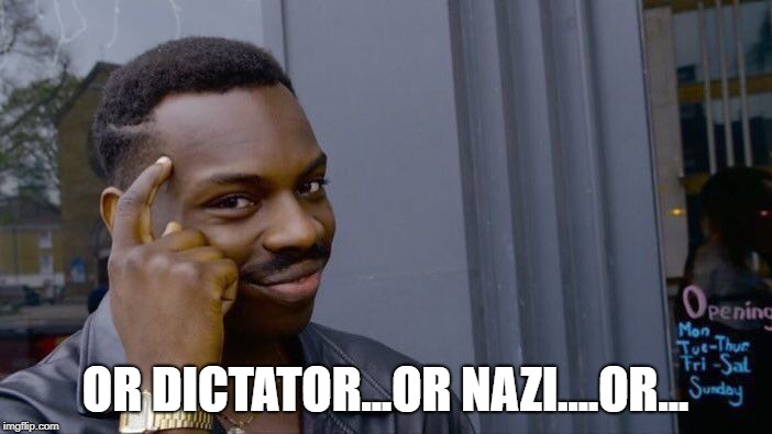 Roll Safe Think About It Meme | OR DICTATOR...OR NAZI....OR... | image tagged in memes,roll safe think about it | made w/ Imgflip meme maker