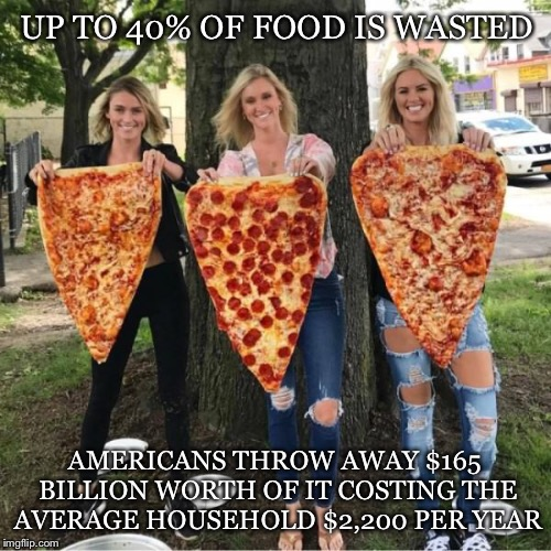 What A Waste | UP TO 40% OF FOOD IS WASTED AMERICANS THROW AWAY $165 BILLION WORTH OF IT COSTING THE AVERAGE HOUSEHOLD $2,200 PER YEAR | image tagged in food,waste,costing,americans,household,wasted | made w/ Imgflip meme maker