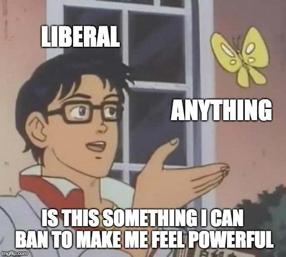 Is This A Pigeon Meme | LIBERAL ANYTHING IS THIS SOMETHING I CAN BAN TO MAKE ME FEEL POWERFUL | image tagged in memes,is this a pigeon | made w/ Imgflip meme maker